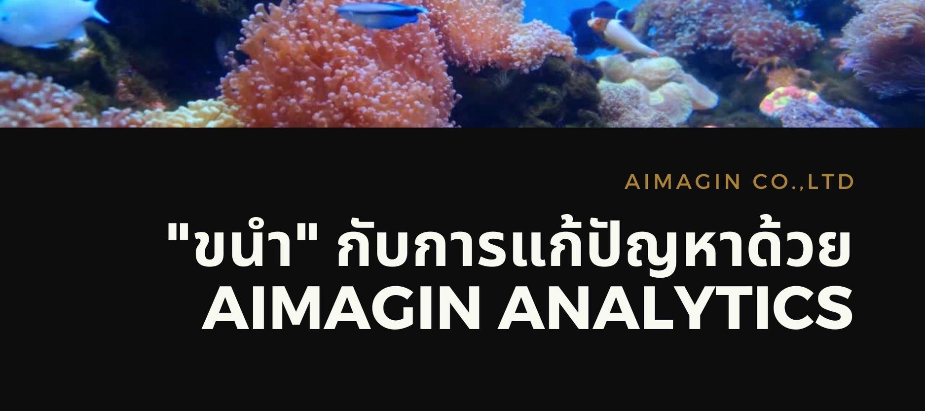 Aimagin Analytics for Shellfish Culture
